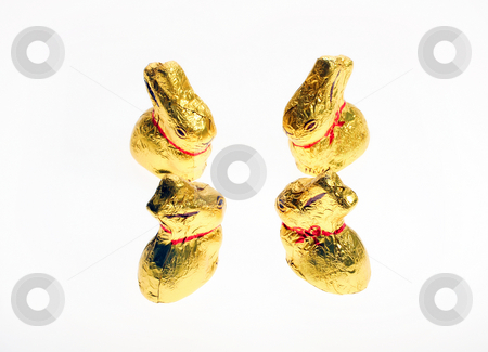 Four golden chocolate Easter bunnies stock photo, Four small golden chocolate Easter bunnies isolated with area for text by Christopher Meder
