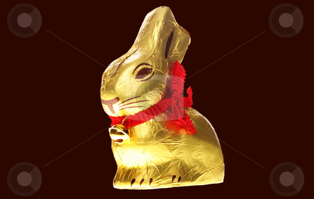 Isolated golden chocolate Easter bunny  stock photo, A golden chocolate Easter bunny isolated with area for text by Christopher Meder