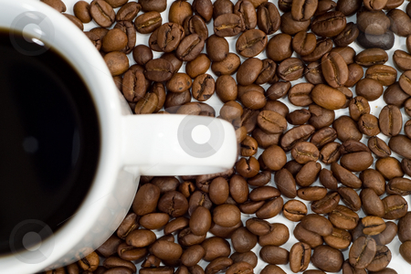 Fresh Coffee Beans stock photo, Fresh coffee beans surrounding a full cup of java by Richard Nelson