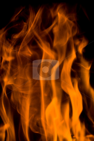 Flames stock photo, Flames by Luca Bertolli