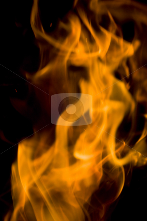 Flame stock photo, Burning flames by Luca Bertolli