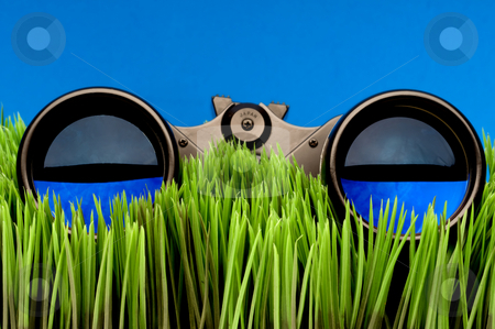 Horizontal close-up of binoculars on green grass with a blue bac stock photo, Horizontal close-up of binoculars on green grass with a blue background by Vince Clements