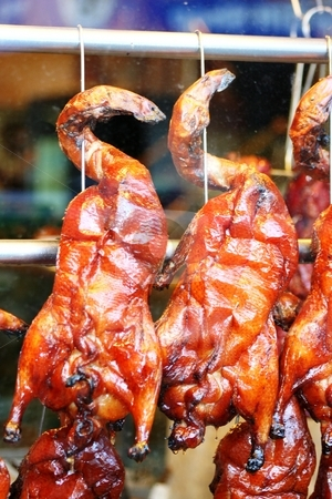 Chineese Butcher Shop stock photo, Chicken hanging in butcher?? by Richard Clack