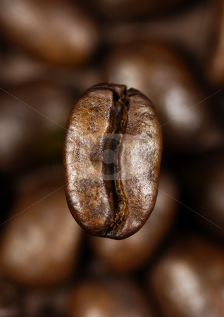Single coffee bean stock photo, Single coffee bean on a background of blurred coffee beans by Paul Turner