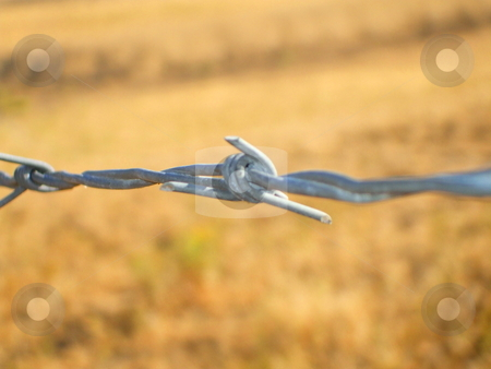 Barbed Wire stock photo,  by Michael Felix