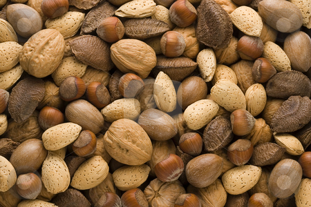 Assorted Nuts stock photo, Assorted Nuts by Danny Smythe