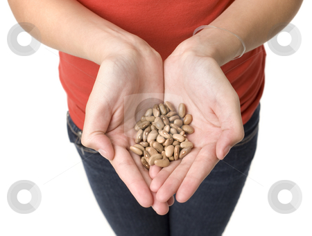 A girl with beans stock photo, A girl holds a handfull of beans by Rick Becker-Leckrone