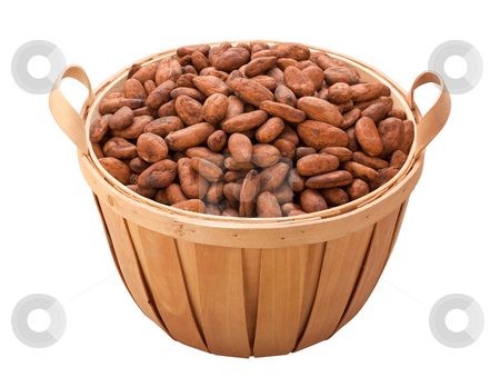 Cocoa Bean Basket stock photo, Cocoa Bean Basket isolated on white with a clipping path by Danny Smythe