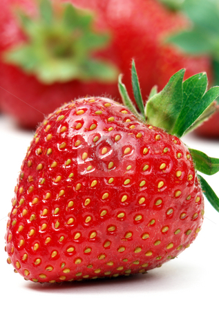 One strawberry stock photo, Stawberry on white with out of focus strawberries in background by Paul Turner
