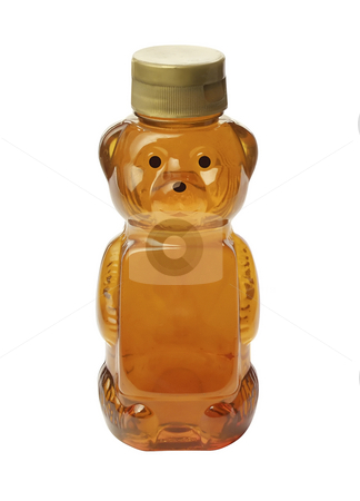 Honey Bear stock photo, Honey Bear isolated on a white background by Danny Smythe