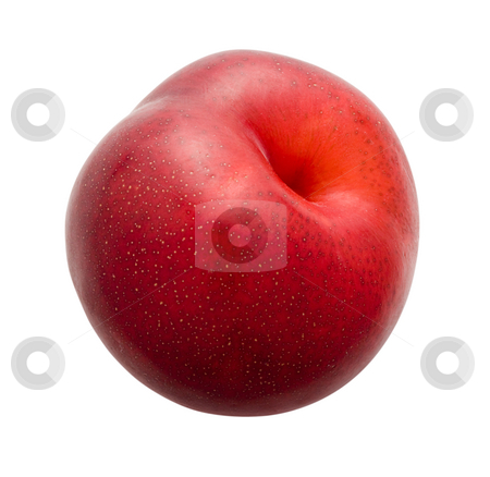 Plum stock photo, Plum isolated on a white background by Danny Smythe