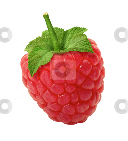 Raspberry stock photo, Raspberry isolated on a white background by Danny Smythe