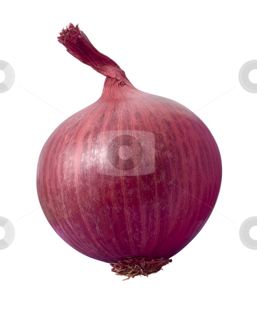 Red Onion stock photo, Red Onion isolated on a white background by Danny Smythe