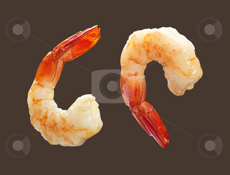 Two Shrimp stock photo, Two Shrimp isolated on a dark background by Danny Smythe