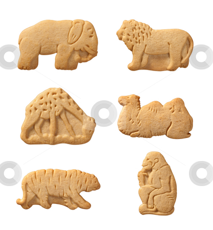 Animal Crackers stock photo, Animal Crackers isolated on a white background by Danny Smythe