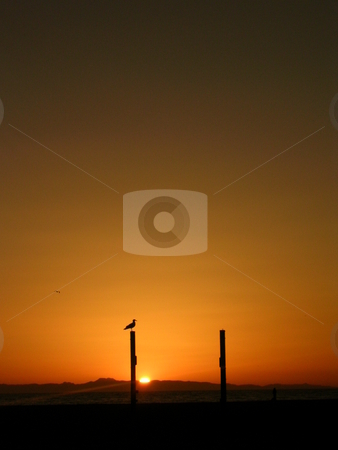 Sunset Behind Catalina Island stock photo,  by Jo Herman