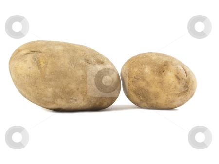 Potatos on white stock photo, Two potatoes on a white background by John Teeter