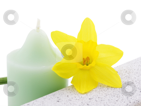 Daffodil, candle and Stone stock photo, Daffodil, Candle and Stone on a white background by John Teeter