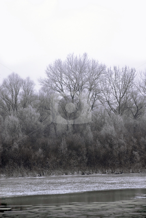 Winter landscape stock photo, Black winter trees on riverbank scenic landscape by Julija Sapic
