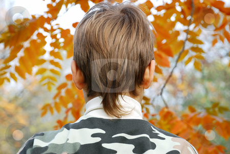 Boy head stock photo, Boy head from back side outdoor over orange leaves by Julija Sapic