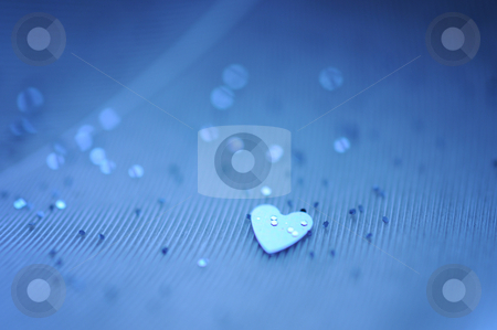 Heart stock photo, Tiny heart on a feather by Angelique Brunas