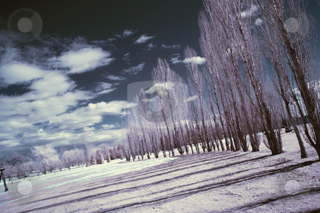 Infrared Landscape stock photo, Landscape scene shot with an infrared filter by Vlad Podkhlebnik