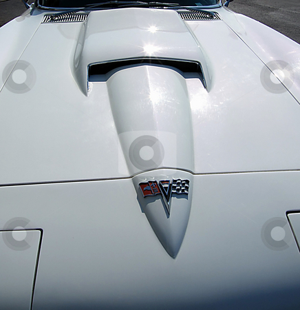 1963 Corvette Sting Ray stock photo, 1963 Corvette Sting Ray, view looking down at the hood, by Dazz Lee Photography