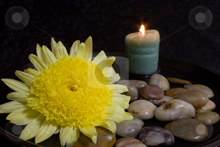 Harmony Candle and Yellow Flower stock photo, Still life with a lit Harmony candle and a large yellow flower with dew drops in a water and stone setting by Terry McClary