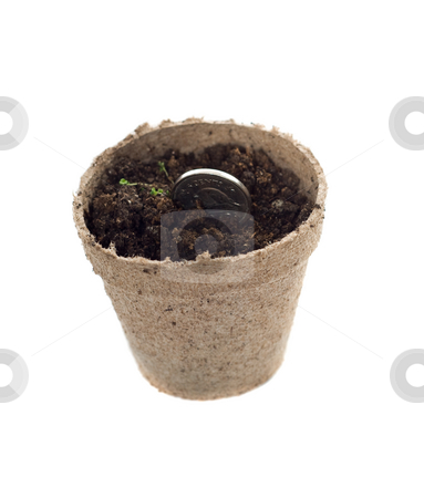 Planting Money stock photo, Concept image of some money being planted in hopes it will grow, isolated against a white background by Richard Nelson