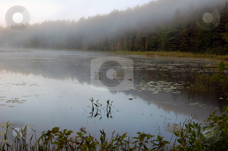 Lake stock photo, Fog above lake in the morning by Pavel Cheiko