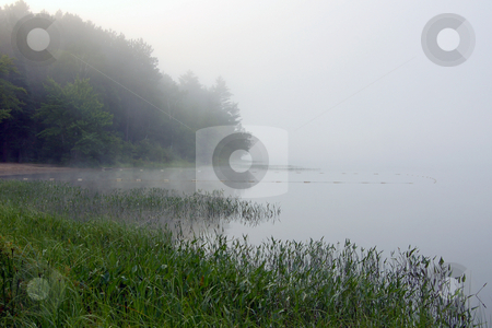 Strobg fog stock photo, Strong fog above lake in the morning by Pavel Cheiko