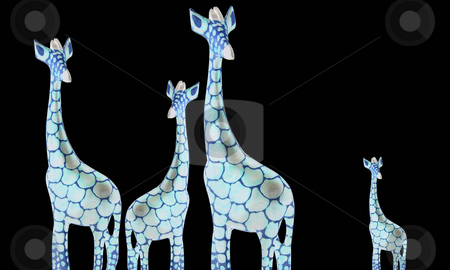 Four giraffes isolated on black background stock photo, Four giraffes isolated on black background by Julia Shentseva