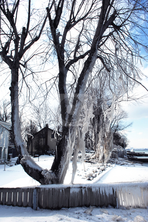 After the snowstorm. stock photo, The lake shore on lake Ontario after a heavy snow and ice storm. by Horst Petzold