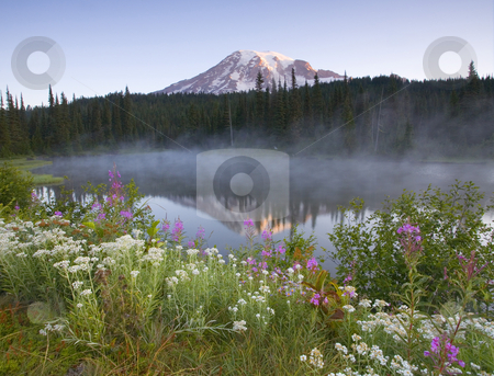 Misty Rainier Dawn stock photo, A cold mist rises from a small lake as first light touches the the peak or  Mt. Rainier by Mike Dawson
