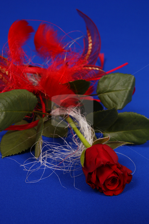 Rose stock photo, Beautiful red  rose with decoration on blue background by Jolanta Dabrowska