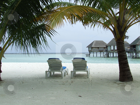 Deck chairs in the shade stock photo, Deck chairs under shade from palm trees on a tropical island by Chris Alleaume