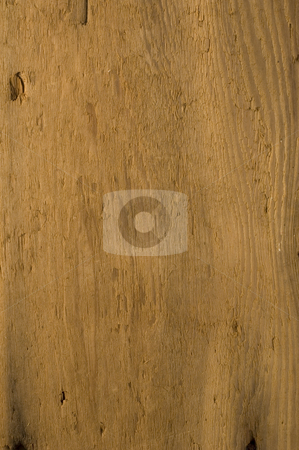 Old weathered wood background stock photo, Old weathered wooden background with plenty of detail by Jonathan Hull