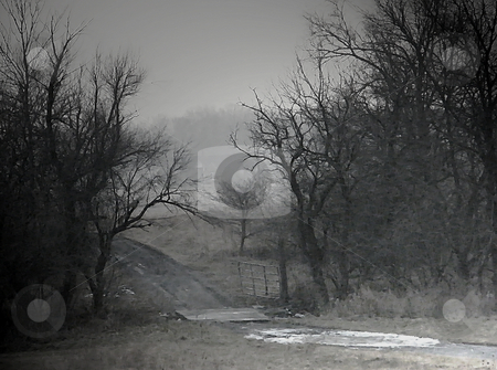Off Road Country Winter (digital art) stock photo, Off Road Country Winter (digital art).. Crosshatched, Dirt roadway with ice and snow patches, a gate and makeshift bridge which crosses a small creek surrounded by trees. by Dazz Lee Photography
