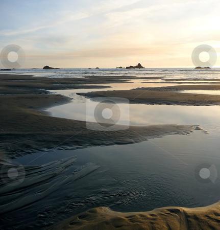 Coastal tidepools at sunset on Oregon beach stock photo, Coastal tidepools meander on the beach at sunset in Oregon by Jill Reid