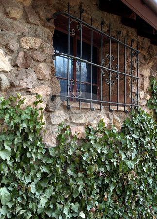 Ivy covered stone wall and window with metal shield stock photo, Green ivy vines climb up a stone and rock wall towards an iron covered window by Jill Reid