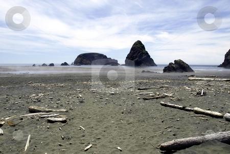 Windswept beach on rocky shoreline stock photo, Driftwood is scattered along a windswept beach on a rocky shoreline by Jill Reid