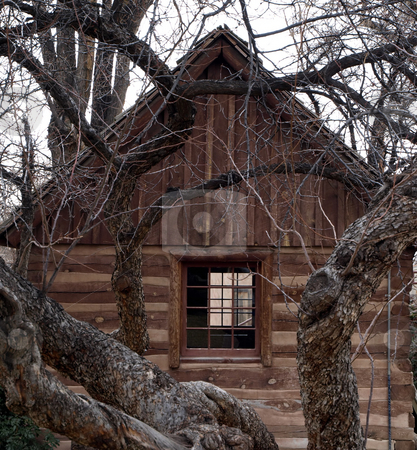 Log cabin through the trees stock photo, View of an authentic log cabin through tree branches by Jill Reid