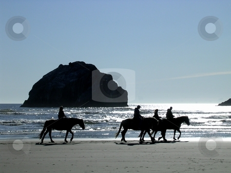 Horseback riders on the beach stock photo, Silhouette of a group of riders on horseback along a sandy beach by Jill Reid