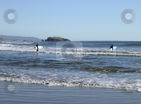 Surfers in wetsuits with surfboards stock photo, Surfers enter the water with wetsuits and their surfboards by Jill Reid