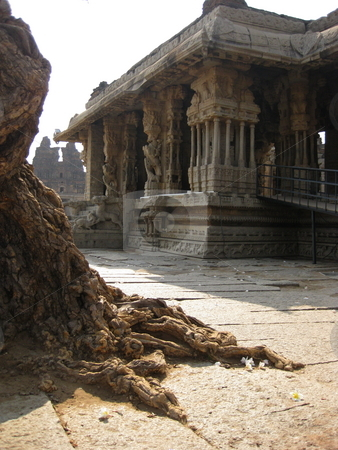 Ancient tree, Ancient Temple stock photo, A Picture of an ancient vijaynagar Temple in Hampi, with an old tree in the foreground by Colin Elves