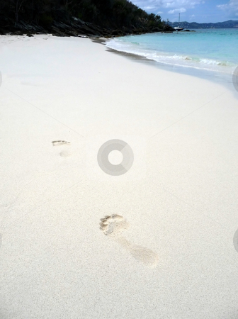 Footprint trail on sandy tropical beach stock photo, Trail of footprints along a sandy tropical beach by Jill Reid