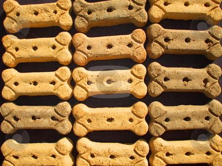 Dog Cookies stock photo,  by Michael Felix