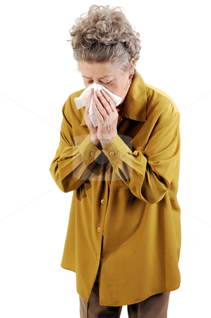 Senior woman with a cold. stock photo, Senior woman with gray hair and an dark yellow jacket blowing her nose She is sick with a cold. On white background. by Horst Petzold
