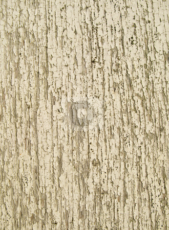 Close up of cracked paint on a wooden fence. stock photo, Close up of cracked paint on a wooden fence. by Stephen Rees