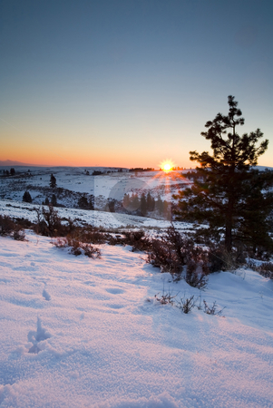Winter Sunrise stock photo, Sunrise atop a ridge along the Tieton River in the dead of Winter by Mike Dawson